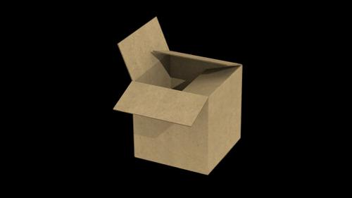 Cardboard Box 1.1 preview image