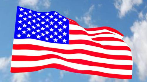 American Flag preview image