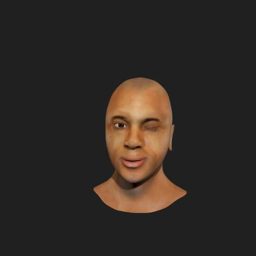 Human Head Model preview image