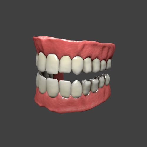 High Poly Teeth And Gums preview image