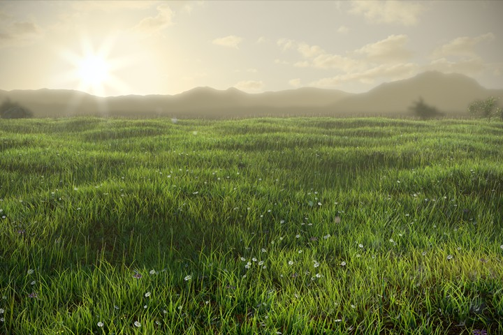 Grassy Field preview image 1