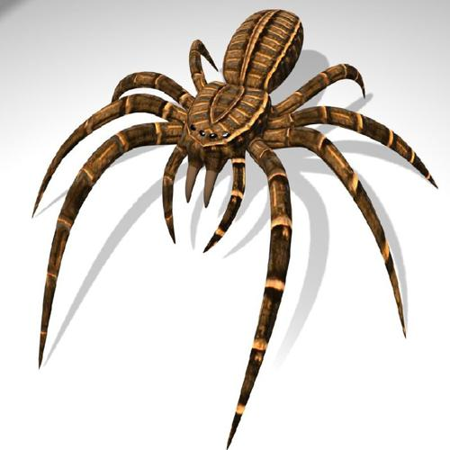 BGE Spider preview image