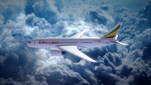 Ethiopian Dreamliner preview image