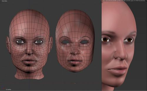 Female Head Tutorial Head Pt. 1 preview image