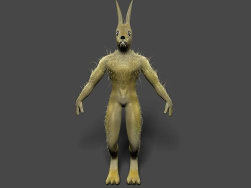 Rabbit Rig preview image
