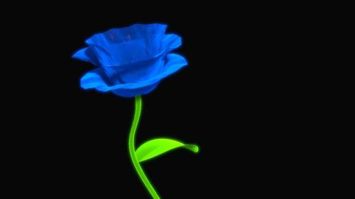 Blue Flower preview image