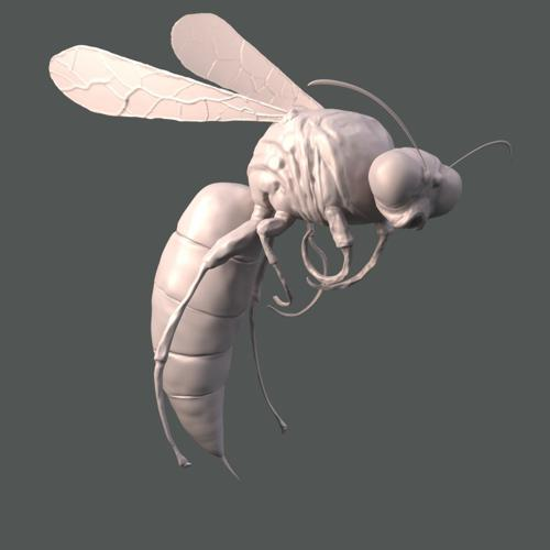 Wasp Sculpt preview image