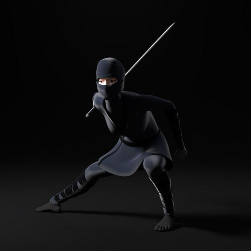Female Ninja 2.0 preview image