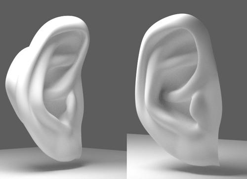 Ear preview image