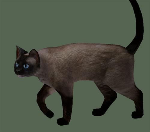 Lowpoly Siamese Cat preview image