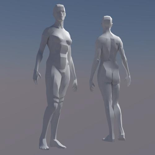 Rigged Female Figure preview image