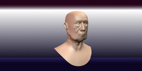 Realistic Old Man Head preview image