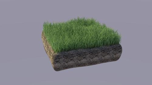 Realistic grass preview image