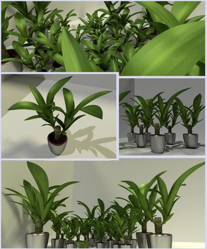 Indoor Pot Plant 2 preview image