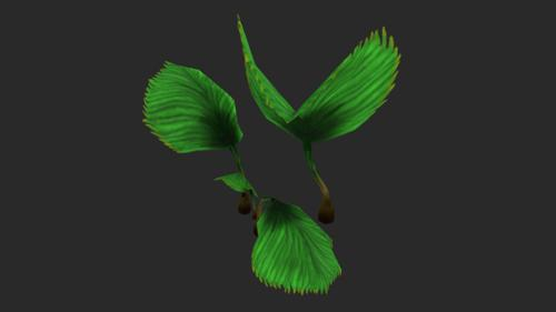 Dragon Claw-Plant preview image