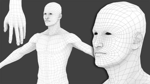 Generic Male Basemesh (rigged) preview image