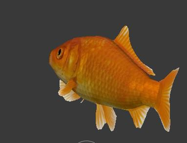 fish preview image