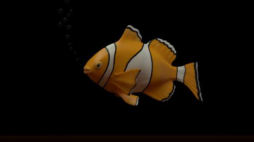 Clown Fish preview image