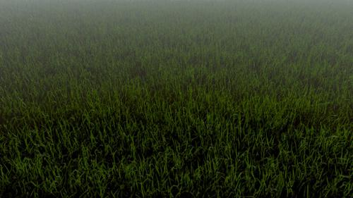 Realistic Grass in Cycles preview image