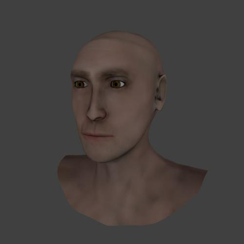 Realistic Lowpoly Head preview image