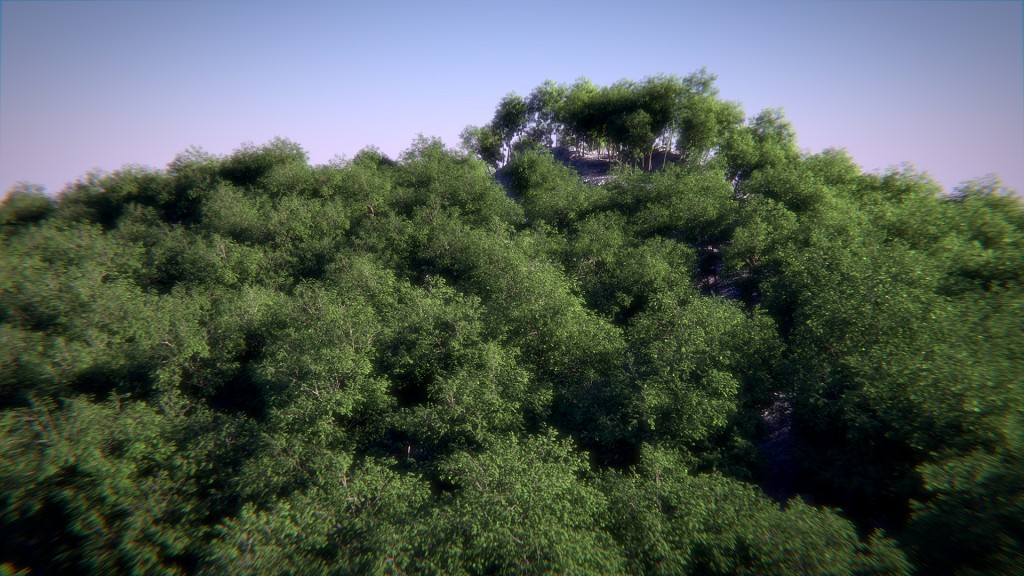 Realistic Forest with Cycles preview image 1