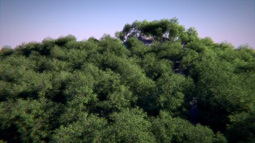 Realistic Forest with Cycles preview image