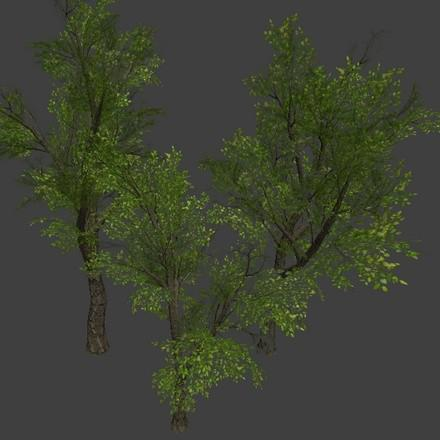 3 Low Poly Trees preview image
