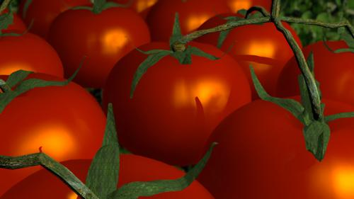 tomatoes preview image