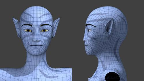 - Avatar Male and Female -  preview image