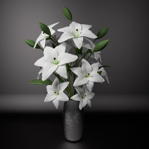 White lily preview image