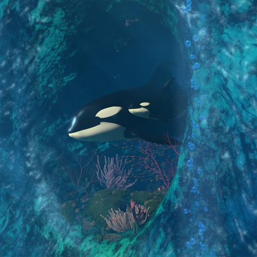 Killer Whale Scene preview image