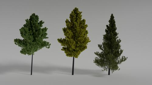 3 Different Realistic Trees preview image