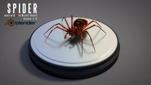 Spider preview image