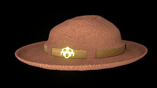 Hat in cycles preview image