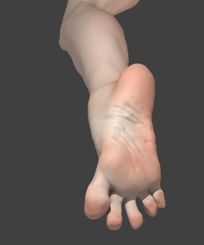 Foot preview image