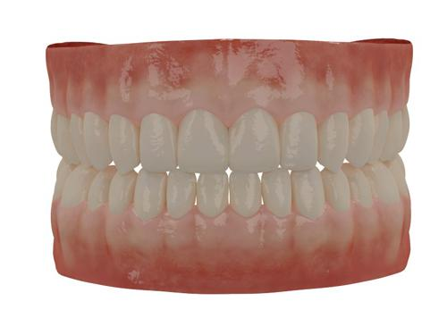Human Teeth preview image