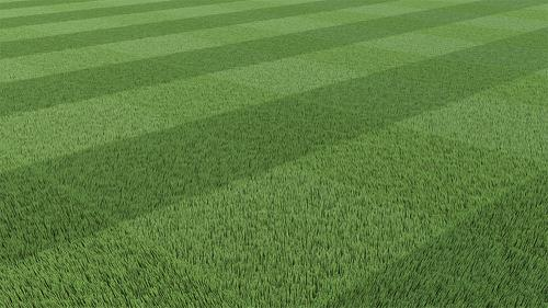 Mowed Grass - Cycles preview image