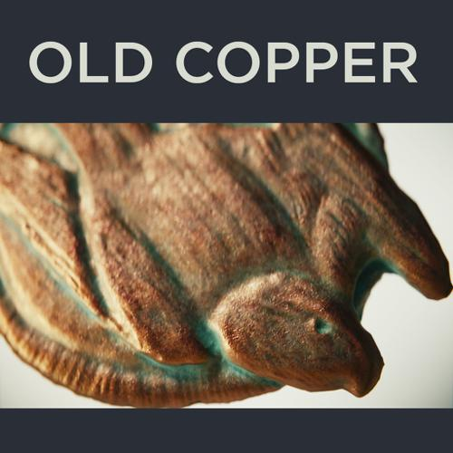 Old Copper Medallion preview image