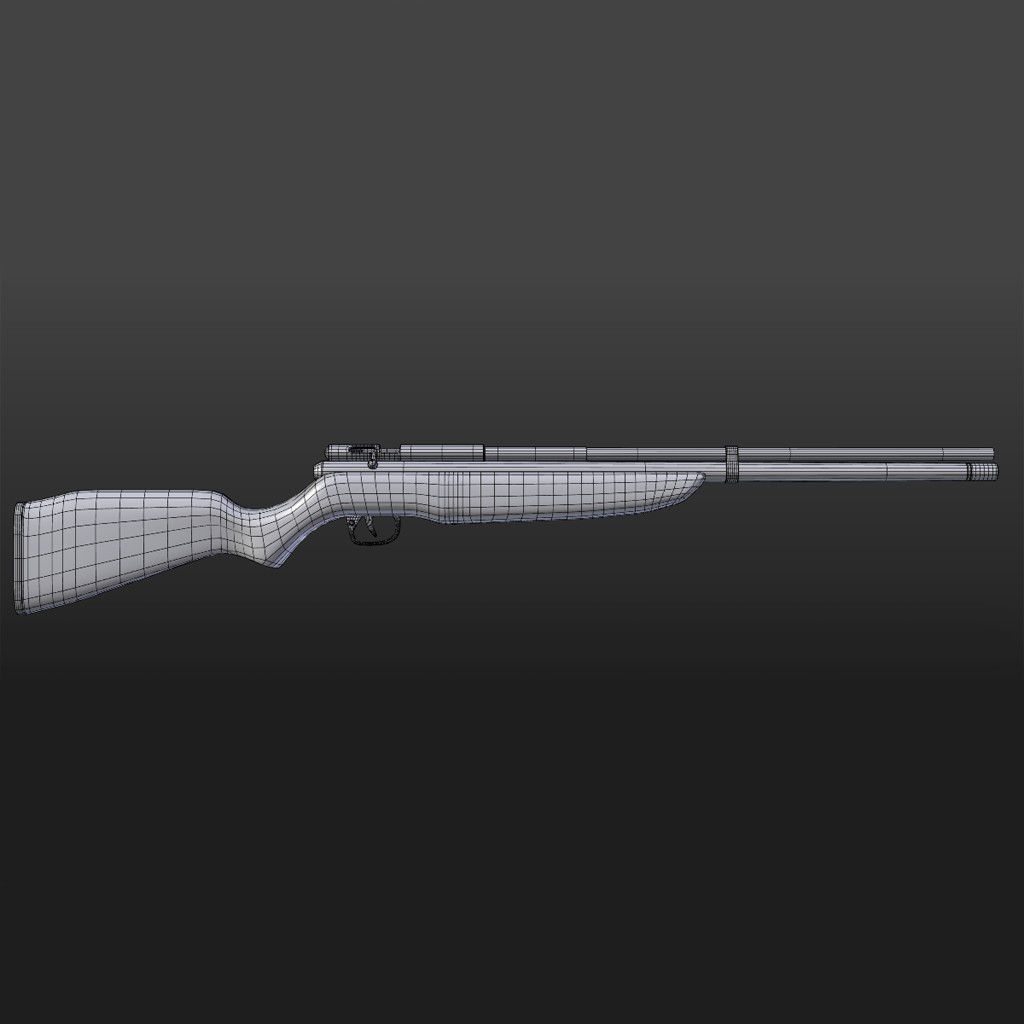 Benjamin Discovery Hunting Rifle preview image 2