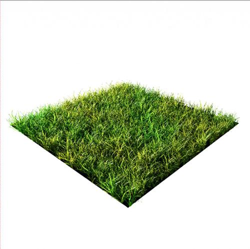 Realistic Cycles Grass Pack preview image