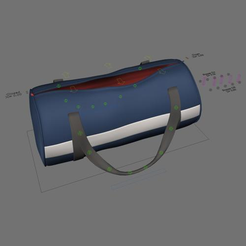 Sport Bag Rigged preview image