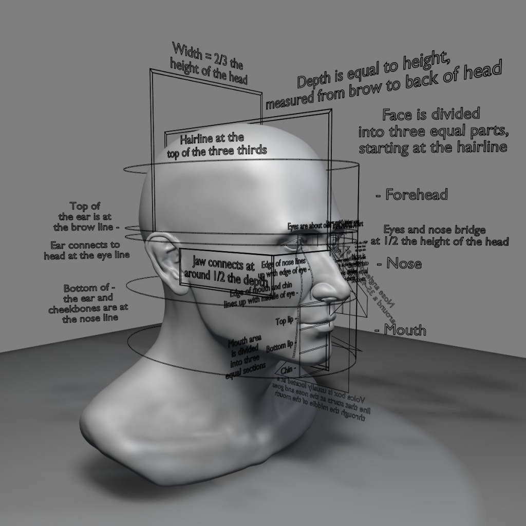 Proportions of the Face preview image 1