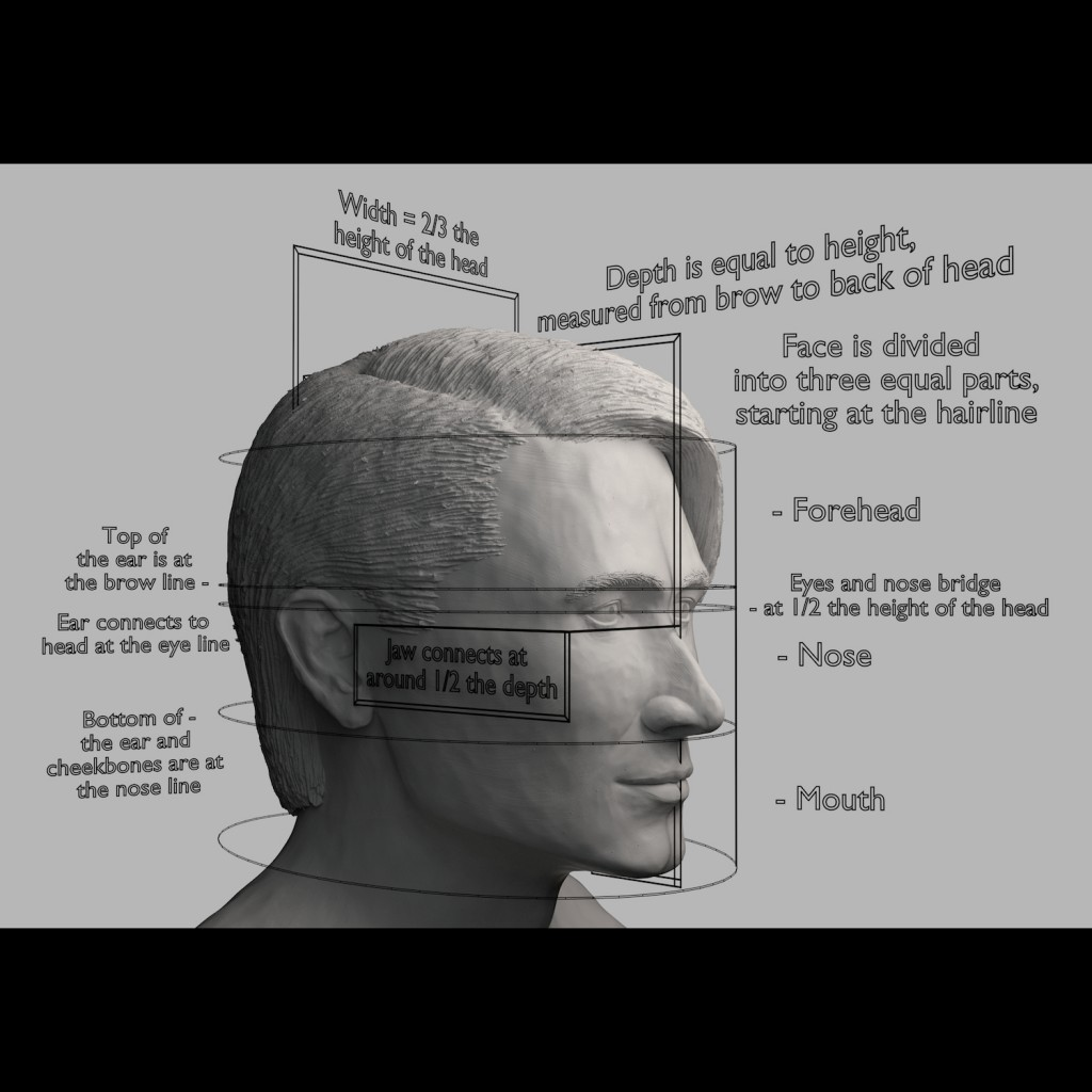 Proportions of the Face preview image 5