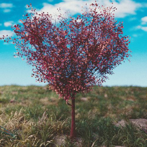 Heart Shaped Tree preview image