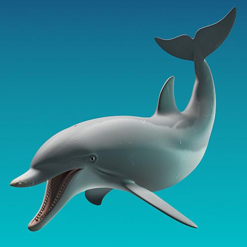 Dolphin preview image