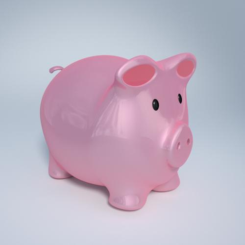 Plastic Piggy preview image