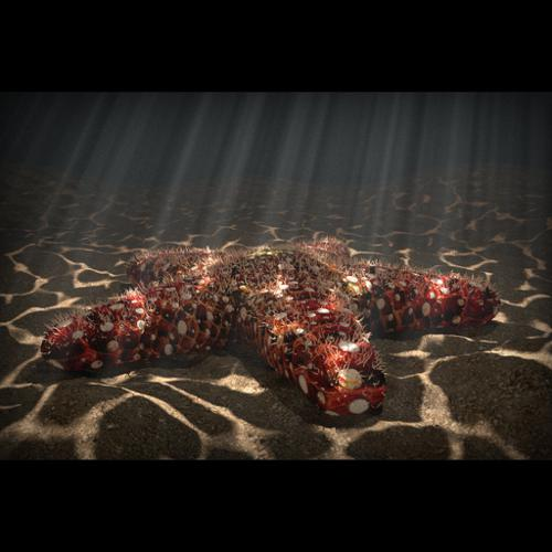 Starfish with volumetric fog and fake caustics preview image