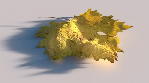 High Poly Autumn Leaf preview image