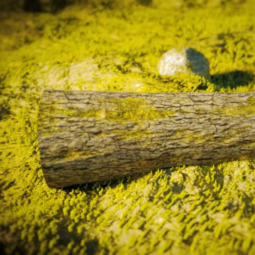 Grass, Log, and Rock preview image