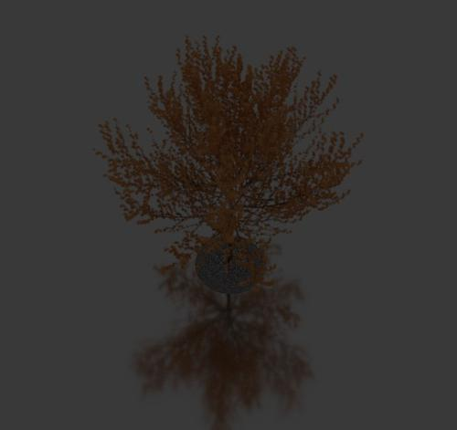 Realistic tree preview image